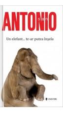 Un elefant… te-ar putea insela