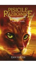 Pisicile Razboinice. Apus...