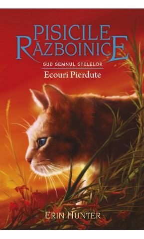 Pisicile Razboinice. Ecouri pierdute....