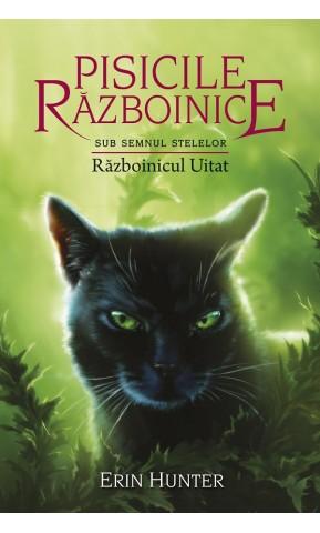 Pisicile Razboinice. Razboinicul...